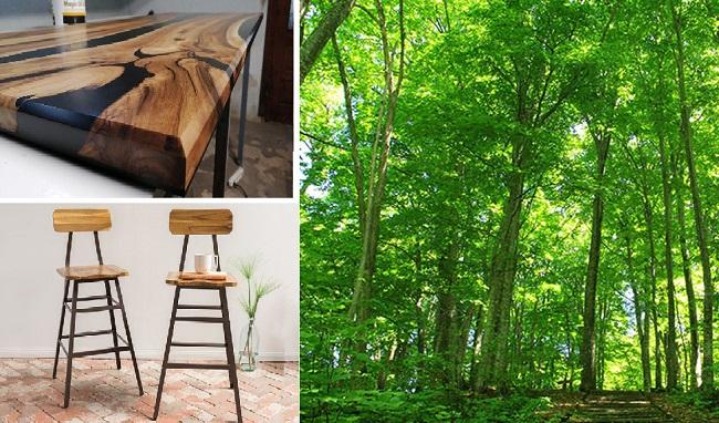 Ứng dụng của gỗ keo